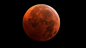 lunar-eclipse-october-20141