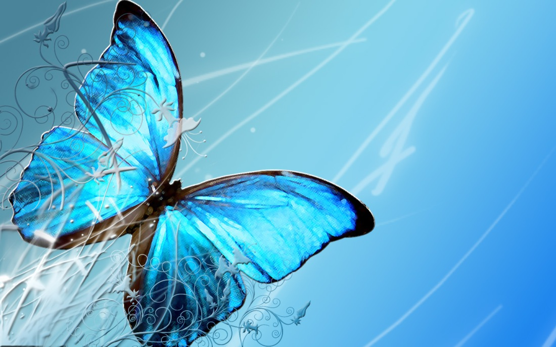 blue-butterfly-wallpapers